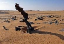 Libia manda militari al confine con il Ciad