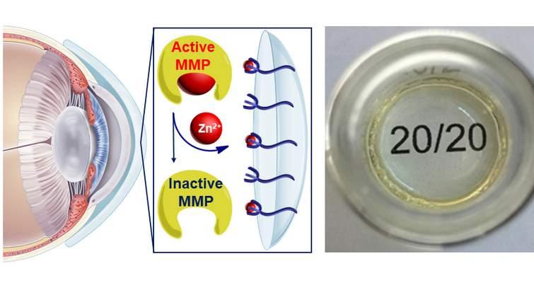 Lenti a contatto a base di idrogel per curare fusione corneale