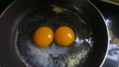 fresh farm eggs that taste like eggs