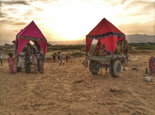 Camel Safari In Jaisalmer is one of the most amazing experiences in the golden city