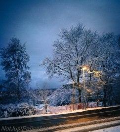 Snø 1