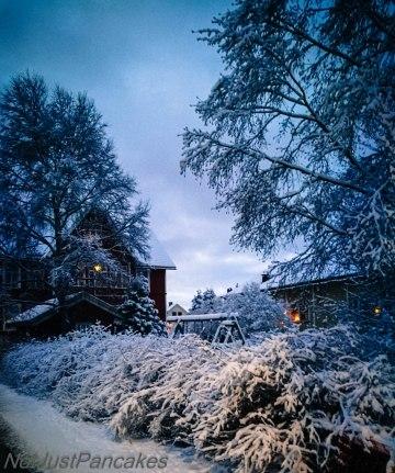 Snø 2