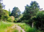 County Park 2016 3