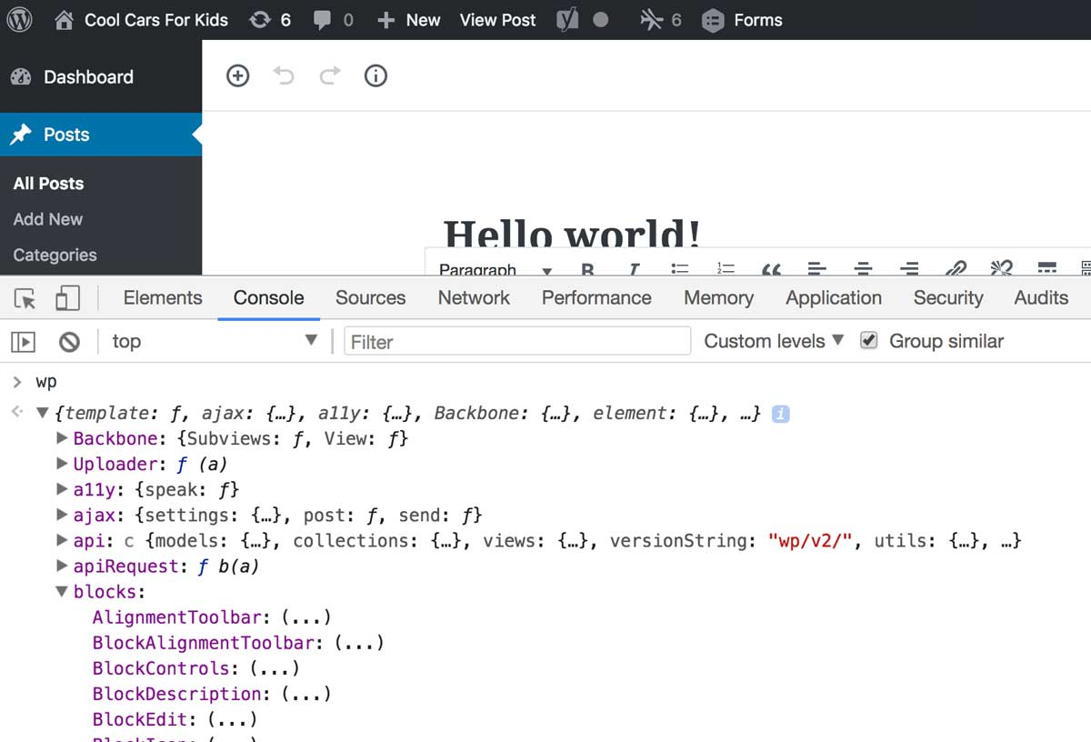 A screenshot of the wp object in the JavaScript console