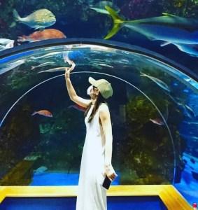 インスタ映え間違いなし!国内最大級レベルの水族館「のとじま水族館」【能登島】