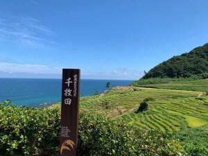 世界農業遺産「能登の里山里海」の代表的な棚田として有名な「白米千枚田(しろよねせんまいだ)」【輪島】