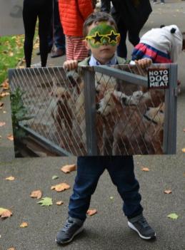 Dog Show Fun Day NoToDogMeat Adoptdontshop 05