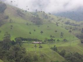 n_Salento and Cocora Valley (107)