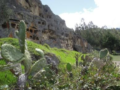 Cajamarca (10)