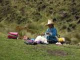 Cajamarca (101)