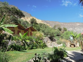 Colca kanion_Oasis (5)