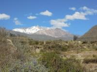 Colca kanion_on the way (18)