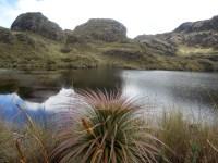 Parque Nacional Cajas (10)