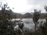 Parque Nacional Cajas (22)