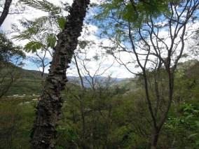 Vilcabamba (5)