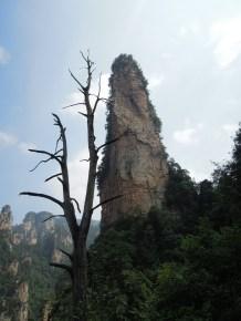 Zhangjiajie 24