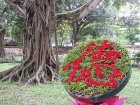 Hanoi (73)