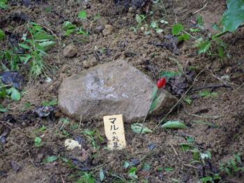 9.4まるの墓