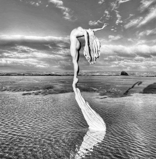 Driftwood ballerina sculpture 'Follow your dreams'