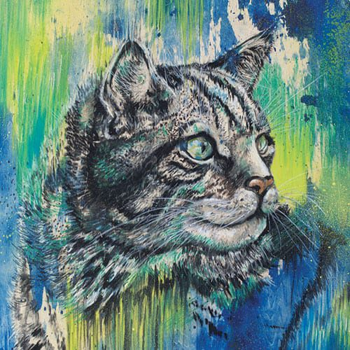 Wildcat painting on wood panel