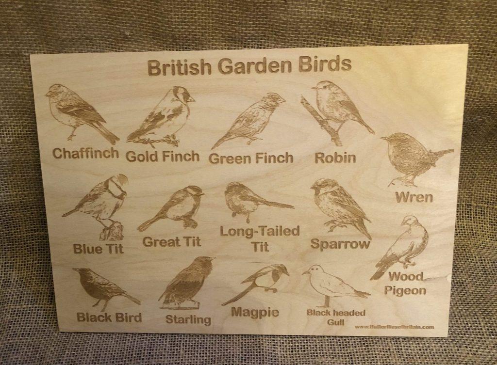 Bird ID board