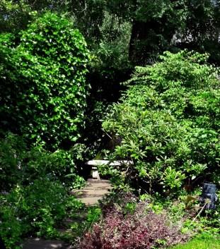 Path and hidden seat - Garden 7