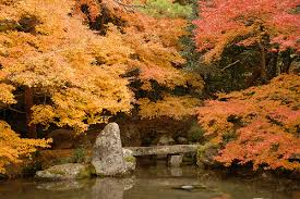 fall at reen-ji