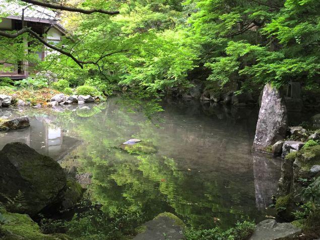 Japanese garden in Kyoto