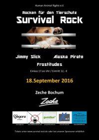 survival rock