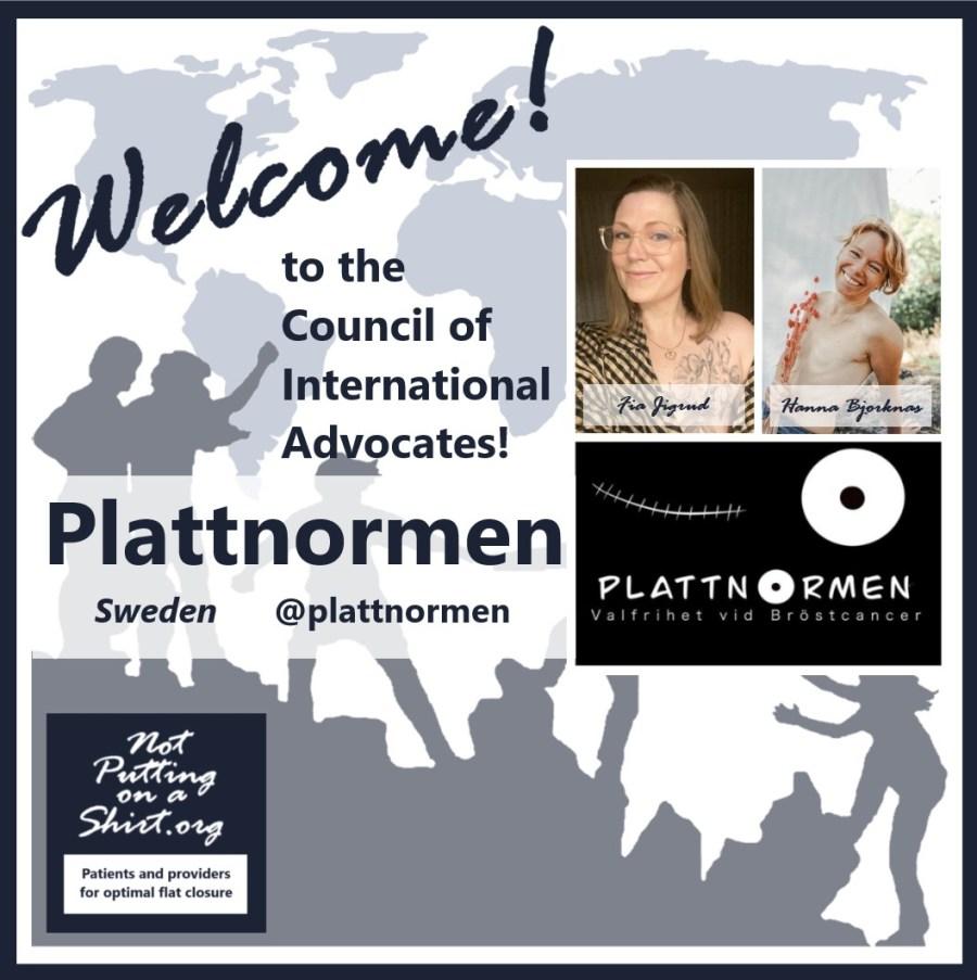 Welcome to NPOAS Council of International Advocates, Plattnormen