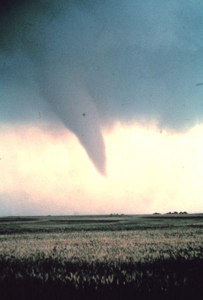 Tornado_at_beginning_of_life_-_NOAA