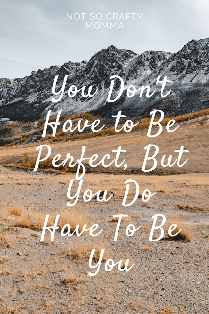 You Don't Have to Be Perfect, But You Do Have To Be You