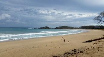 Pebbly Beach - Yuraygir NP