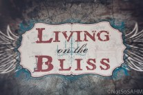 Living on the Bliss sign in Southern Pines Not So SAHM