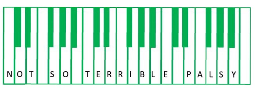 A piano with a green outline and green keys (replacing the black keys) and then not so terrible palsy written across the keys in black writing
