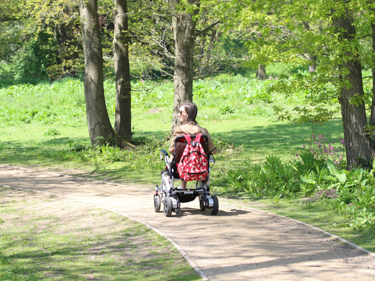 Photo of the back of my driving off in my wheelchair in surrounded by trees.