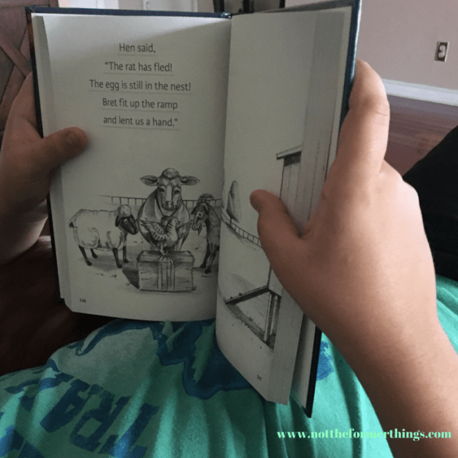 Why We Use All About Reading with my Dyslexic Son (2)