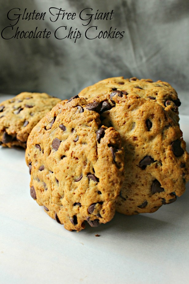 Giant chocolate chip cookies CV