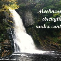 Meekness? - 31 Days of Truth {Day 24}
