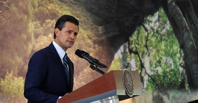 Foto: Cortesía/Presidencia