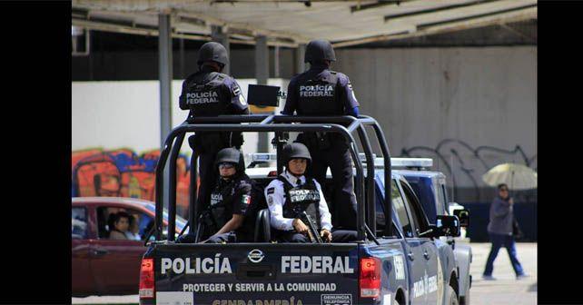 gendarmeria guanajuato