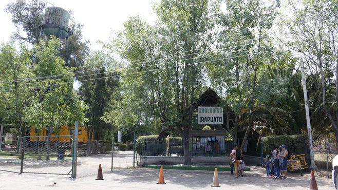 zoo irapuato