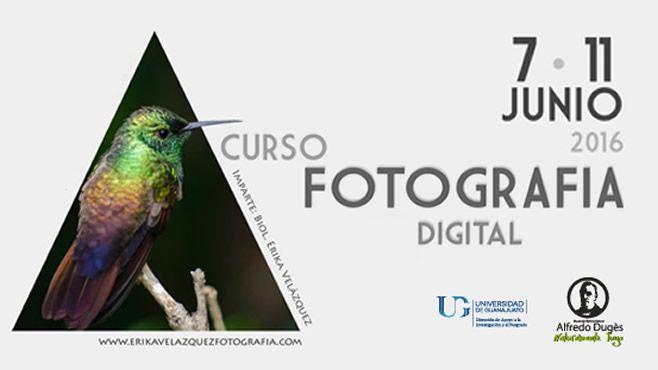 Banner Curso Fotograf_a Digital