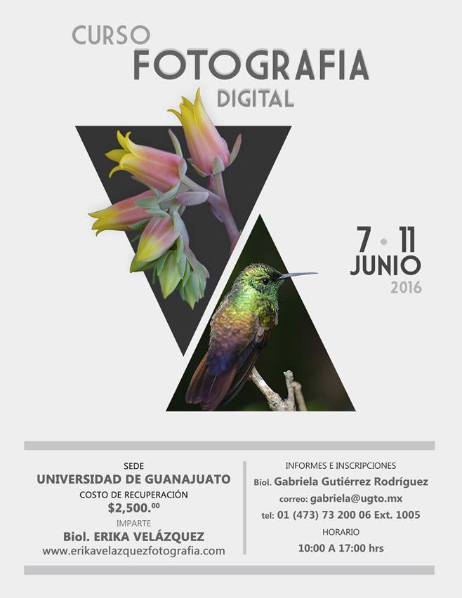Cartel Fotograf_a Guanajuato impresion