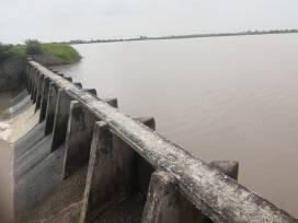 presa inundacion penjamo (7)