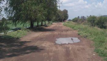 camino munguia-notus3