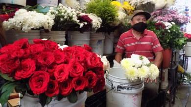 Photo of «Puro tirar y tirar las flores a la basura»: comerciante del mercado Tomasa Esteves