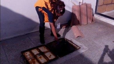 Photo of SSG alcanza 503 mil patios limpios en más de un millón de viviendas visitadas en Operativo Dengue 2020