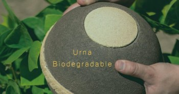 urna-biodegradable-1