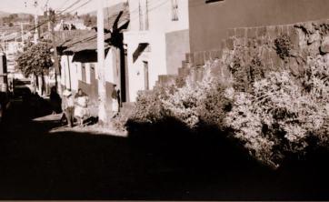 irapuato-antiguo (6)